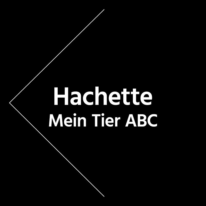 Werk4-projekte-mo-mu_mein-tier-abc